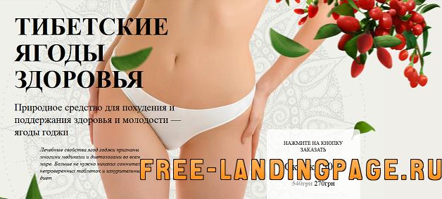landing-page-yagody-godzhi